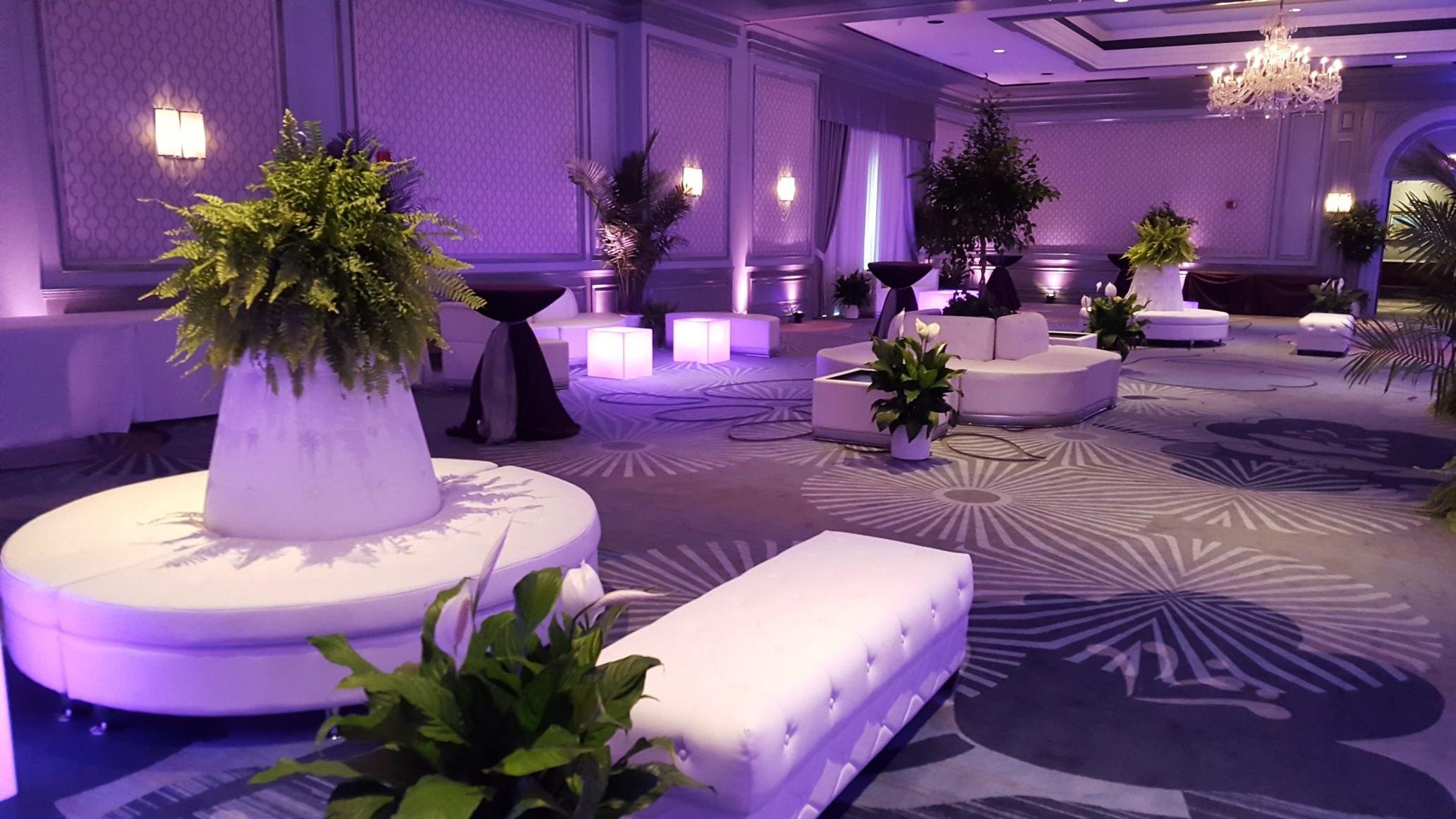 The Henry Hotel Lounge Setup Linens And Beyond